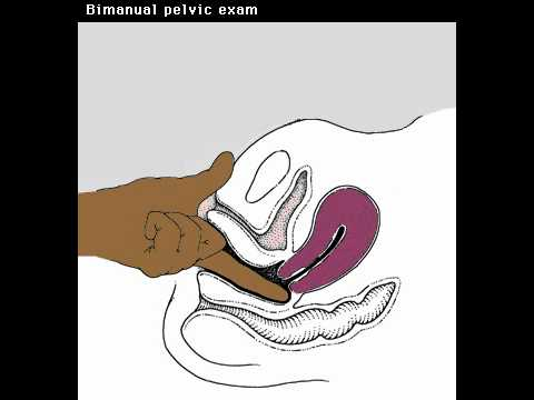 how to give a pelvic exam