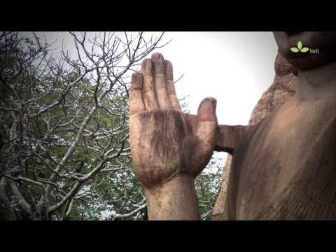 4. Avukana Buddha Statue (Ancient Buddhist Sites in Sri Lanka)
