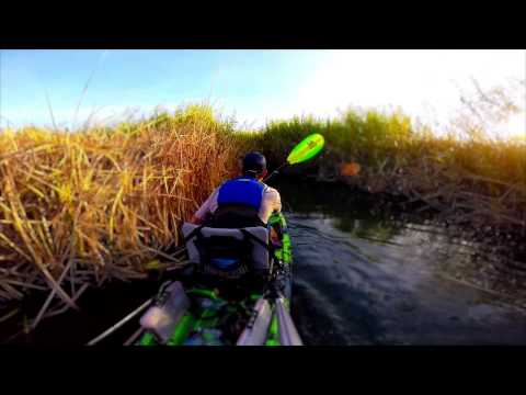 "One Fish, Many GoPros; EPISODE 8, ""California Dreamin' on the Colorado River"""