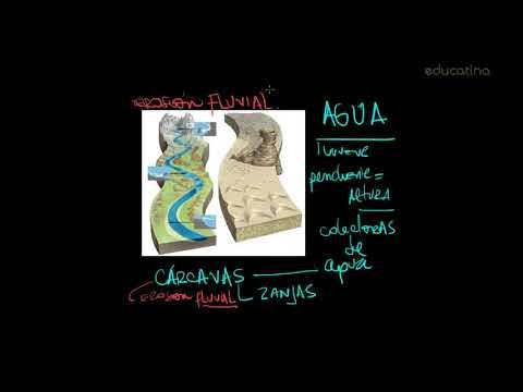 Formas de Relieve: Procesos exógenos - Parte I - Geografía - Educatina