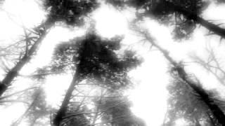 Watch Ensiferum Frost video