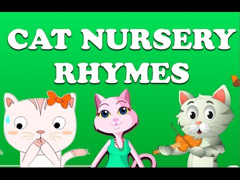 Cat Nursery Rhymes Collection | Animation Songs For Children video