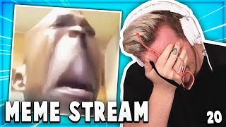 Best Of Mini Ladds MEME STREAM Compilation #20