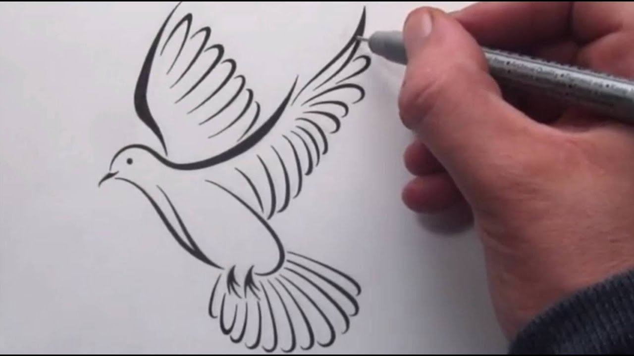 White Doves Drawings How to Draw a Tribal Dove