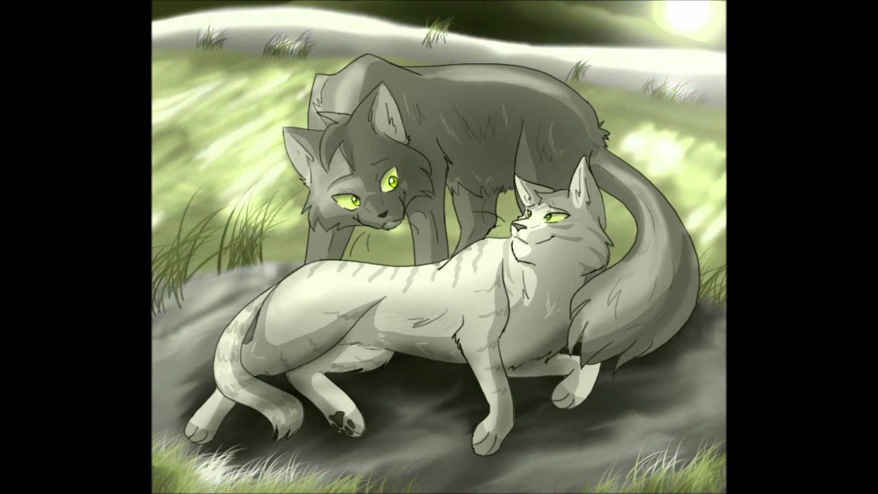 Warrior Cat Graystripe And Silverstream