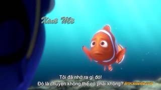Trailer phim  Finding Dory  -  xineme.com