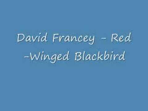 James Keelaghan - Red-winged Blackbird