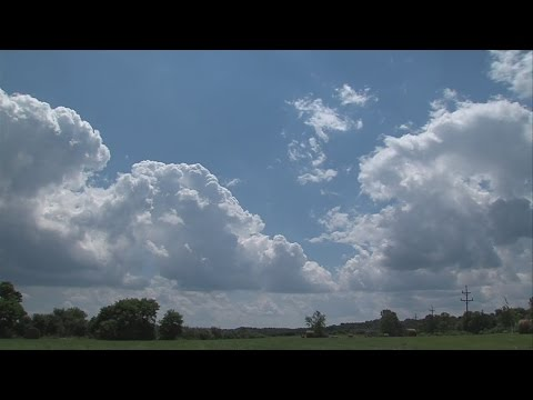 """How the """"meteorological"""" summer turned out"""