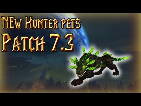 NEW HUNTER PETS IN 7.3│Panthara and more│World of Warcraft Legion