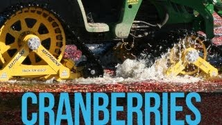 Cranberry Farming with Mattracks