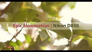 Peter McKinnon B-Roll Challenge | Nikon D850 120FPS