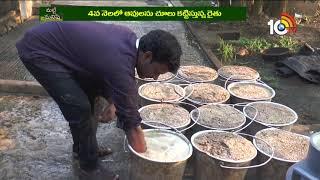 పాడిపరిశ్రమను లాభసాటిగా మార్చిన యువరైతు | Success Mantra in Dairy Farming | Matti Manishi News