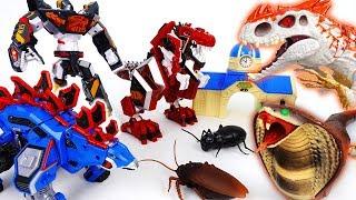 Go Go 3 Geo-Mecha RapTor Tyrannotooth Stegotank~! Battle With Hideous Monsters - ToyMart TV