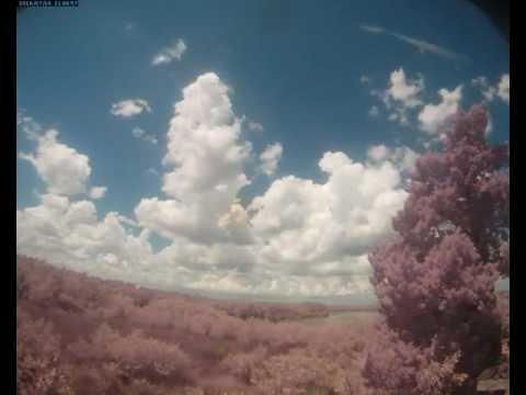 Cloud Camera 2016-07-16: Pasco Energy and Marine Center