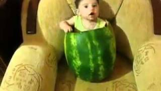 really funny - a baby is eating watermelon