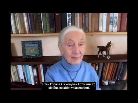 Dr.Jane meséi 3. rész, Az elefánt család