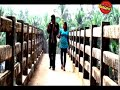 Krishnanum Radhayum 2011 Full Length New Malayalam Movie Santhosh Pandit ...