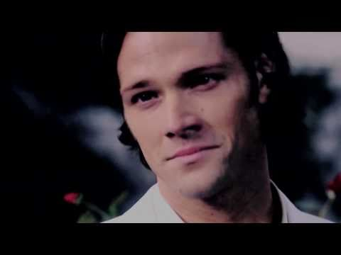 SPN Angels | Illuminated