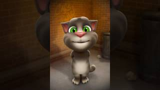 Download Talking tom sing -Bulleya ( song of Ae Dil Hai Mushkil) 3Gp Mp4
