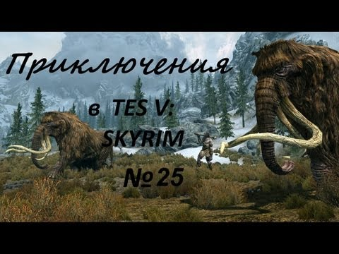 Приключения в TES: Skyrim #25 [Дракон и дом]