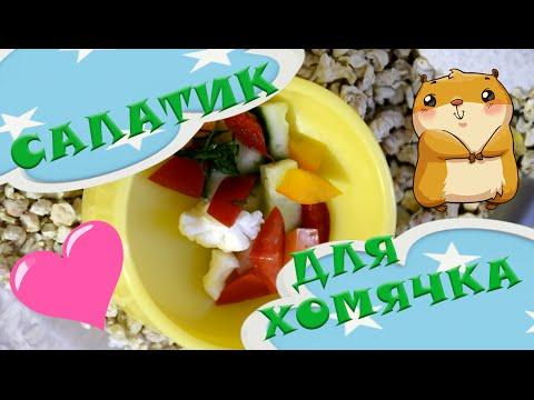 ✿ Овощной салатик для хомячка | Еда для хомячка ✿
