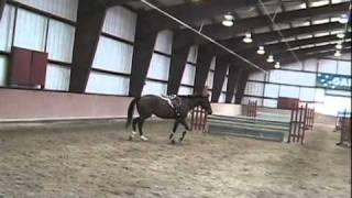 Girl whacks horse after falling off 2011