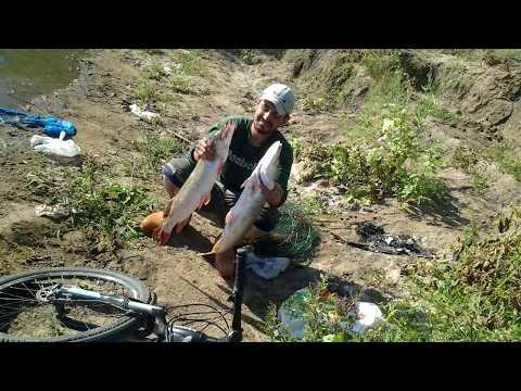 рыбаки астаны