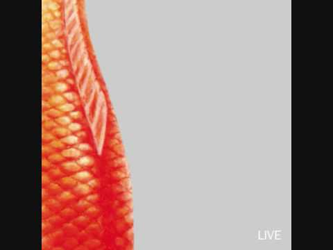 Live - Where The Fishes Go