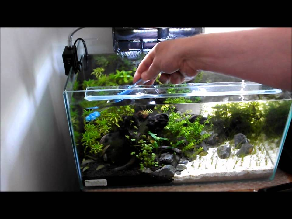 how to make a fish tank cleaner