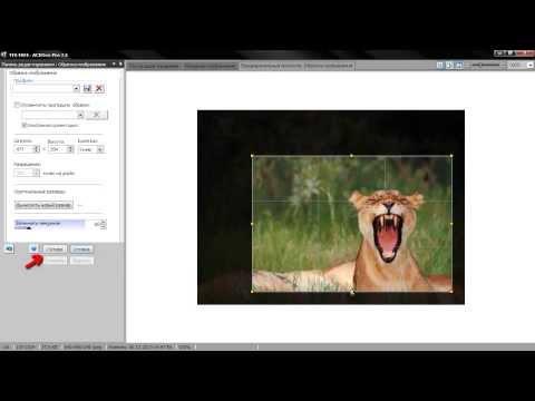 Как сделать картинку оригинал