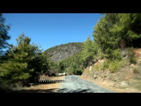 Way to Haa Bhutan C1 L72 7