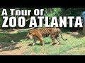 A Tour of Zoo Atlanta