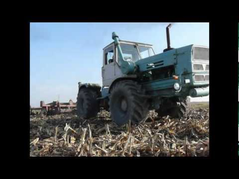 T150K + IH 4.2 Kukorica Tarlóhántás
