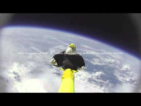 Ellison Eagle Goes to Space