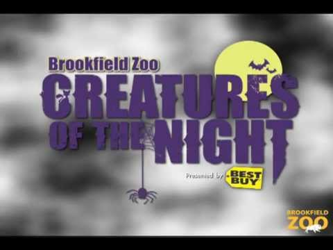 Creatures of the Night 2011 at Brookfield Zoo
