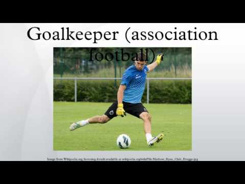 association football and substitute goalkeeper The goalkeeper is the most specialised position in football a goalkeeper's job is mainly defensive: to guard the team's goal from being breached (to not let the other team score).