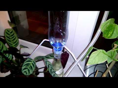 Автополив для комнатных растений на ардуино