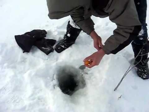 рыбалка на оби видео: