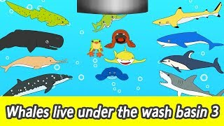 [EN] Whales live under the wash basin 3ㅣkids animals animation, whales adventureㅣCoCosToy