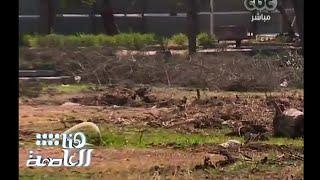 #هنا_العاصمة | مذبحة أشجار حديقة الميريلاند