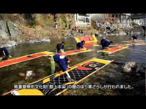 【Goovie 5D】郡上市 「吉田川」 ~鯉のぼり寒ざらし~