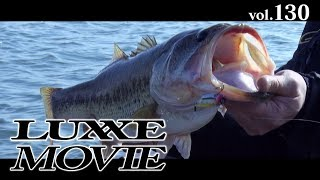 LUXXE MOVIE vol.130 チャンスを逃すな!琵琶湖のブラックバス冬パターン!