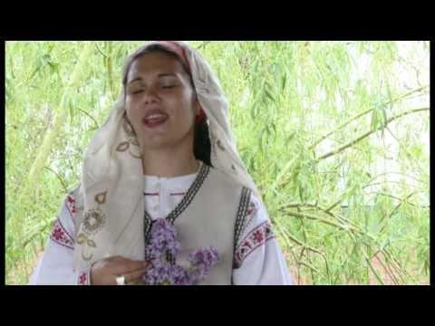 Ramona Dima - Foaie verde viorea