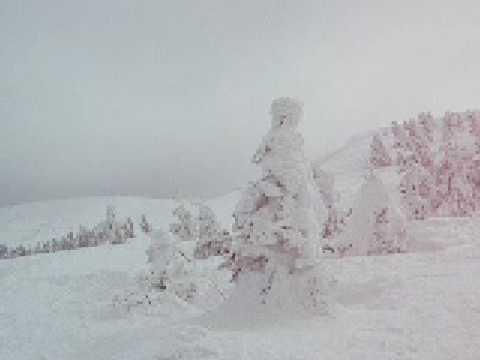 09 03 03蔵王ロープウエイ地蔵山頂駅前の樹氷