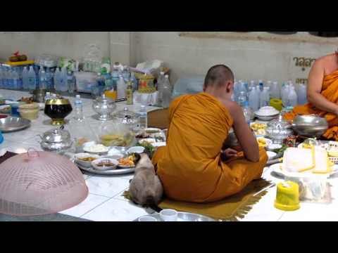 EXCLUSIVE  FOOTAGE ! Thai Monk