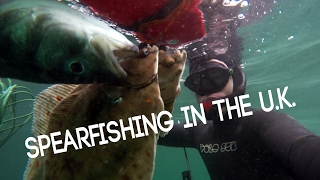Spearfishing in the United Kingdom (Vlog style)