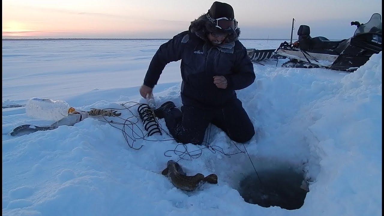Рыбалка на севере видео взять