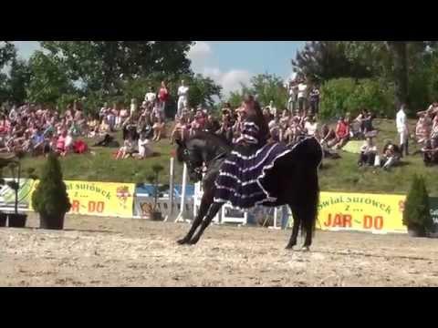 Academy Of Equestrian Art By Karolina Wajda