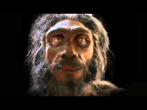 Эволюция человека за одну минуту
