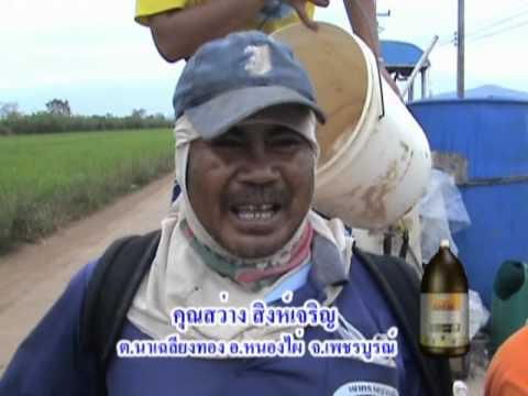 การทำนาข้าวตอน3 Rice farming